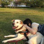 飼い主さんとペットに笑顔を届けたい!